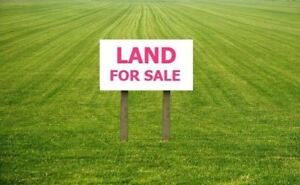 Would You Consider Selling Some Of Your Land ?