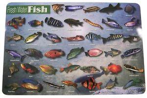 Wanted: any free community fish or cheap fish