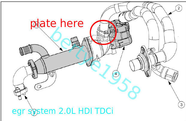 Image Result For Ford Transit Egr Valve Blanking
