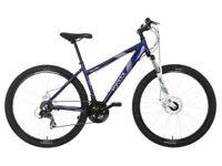 Ladies Apollo Paradox bike