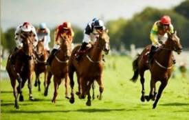 Haydock races Saturday 9th June