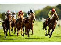 Haydock races Saturday 9th June