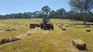 New seasons pasture hay Hahndorf Mount Barker Area Preview