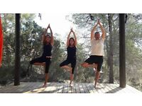Yoga Class - Mixed Ability on Wednesdays 6:15 - 7:30pm, North Cheam.