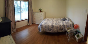 Master bedroom for rent near Whyte Ave & Mill Creek Ravine