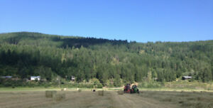 Wynndel Property - house, rental, acreage & farm by Creston