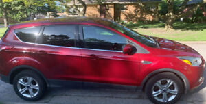 2014 Ford Escape in excellent conditions and great price!