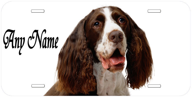 English Springer Spaniel Personalized Any Name Novelty Car License Plate
