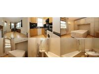 2 bed 2 bath Apartment available now