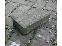 FREE! Paving Blocks