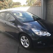 2013 Ford Focus Trend Hatchback Manual Paralowie Salisbury Area Preview