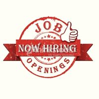 Now Hiring!  Carpenter and Qualified Handyman!