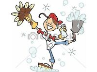 Domestic Cleaner £10.00/h in Coatbridge, Airdrie