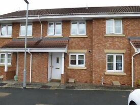 Beautiful 2 bedroom mid terrace modern house available to rent