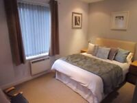 Flat to rent for a group of 3 students / professionals - 1 year joint tenancy