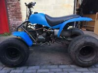 125 quad for sale