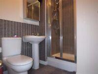 Large furnished room in Hampton Centre, Peterborough PE7 8GJ