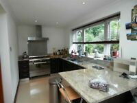 MASSIVE 4 BEDROOM HOUSE!!! - TOOTING BEC - ONLY £2,300 PER MONTH!!!