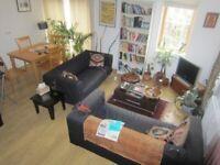 Modern 1 Bedroom apartment in Denmark Hill - REDUCED