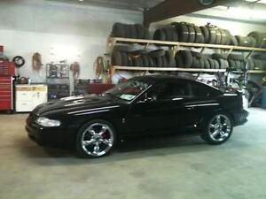 Looking to find my old stang again