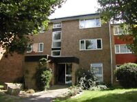 One Double Bedroom Apartment Perivale