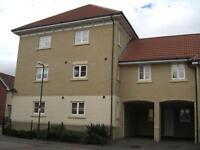 1 bedroom flat in Ridgewell Avenue, Chelmsford, Essex, CM1