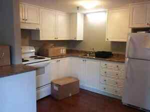 All incl. Pet Friendly, room for rent in North End!