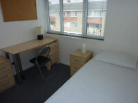 HATFIELD AL108TR DOUBLE ROOM. Available TODAY. CLOSE TO SHOPS & UNIVERSITY. PERFECT FOR STUDENTS