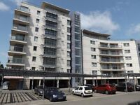 2 Bed/bedroom 2 bathroom Apartment With Balcony Allocated Parking And Gymnasium