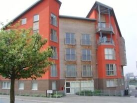 Spacious 2 Bed apartment L3.