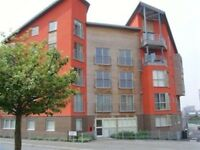 Spacious 2 Bed apartment L3