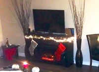 DARK WOOD ELECTRIC FIREPLACE