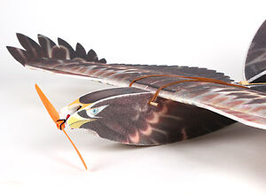 RC EPP Eagle with Brushless M, Speed C, Servos and 6ch Rx Cornwall Ontario image 2