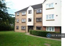 1 bedroom flat in Redmayne Drive, Chelmsford, CM2 (1 bed) (#1214392)