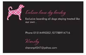 Dog home boarding