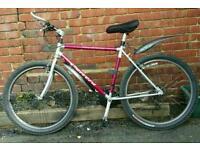 Carrera lightweight bike