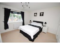 4 BEDROOM*PRIVATE RENT* COACH HOUSE*COPPLESTONE*NO FEE'S*NEWLY REDECORATED*NEW CARPETS*MUST SEE*
