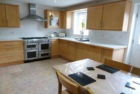 Immaculate 4 bed town house to rent, Horfield