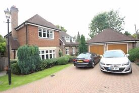5 bedroom detached house to rent Chipstead Way - NO FEES