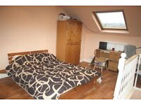 Large attic room to let in terrace in Hillsborough with Cats