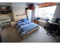Huge room in shared house 6 months only