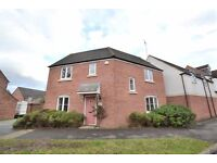 MODERN DETACHED HOUSE-SHARE AVAILABLE NOW IN KINGSWAY - CLOSE TO BUS STOPS & LOCAL AMENITIES.