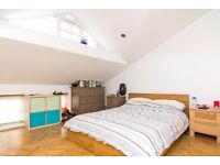 Brand new One double Bedroom House with garden to rent in Crouch end N8 London