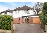 3 Bedroom House in Beckenham - Short Term Let