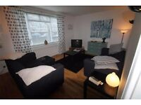 renovated one bedroom flat in crystal palace, stunning