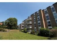 SPACIOUS UNFUNRISHED 1 BEDROOM FIRST FLOOR FLAT WITH PARKING IN MEYRICK PARK