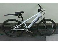 Kids mountain bike (10-12