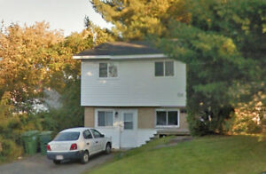 Investment Property- Always Rented - Walking Distance To UNB!