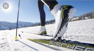 ISO Womens Cross Country Skis