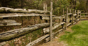 Rail Fence Posts for Sale